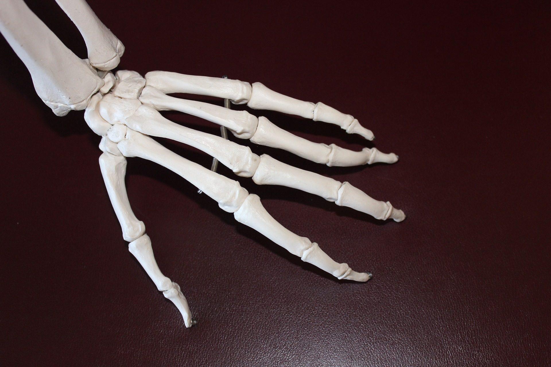 Ortopeda – lekarz od urazów?